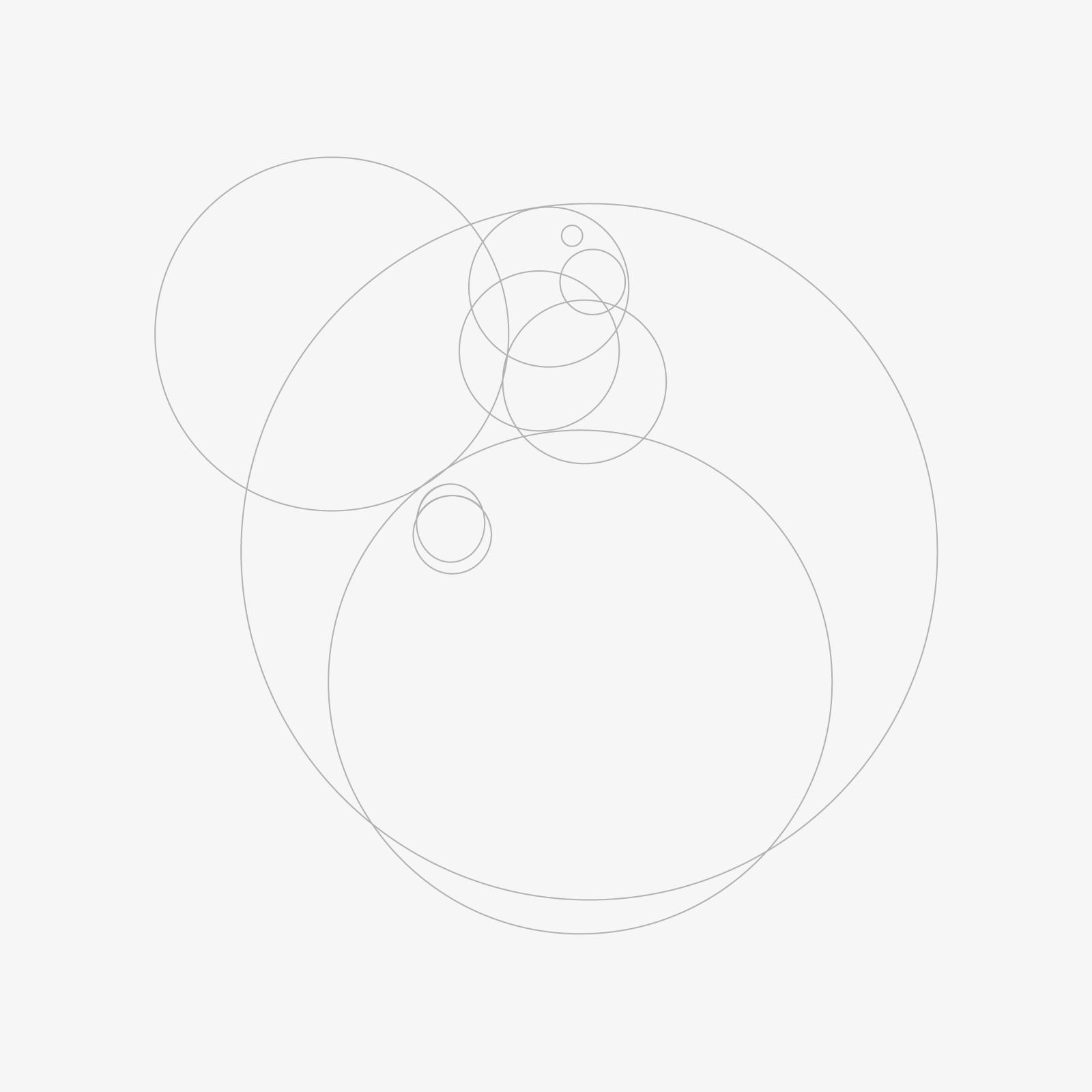 https://www.orlandinifrancesco.com/wp/wp-content/uploads/2019/01/Logo-Pappagallo-1-1.jpg