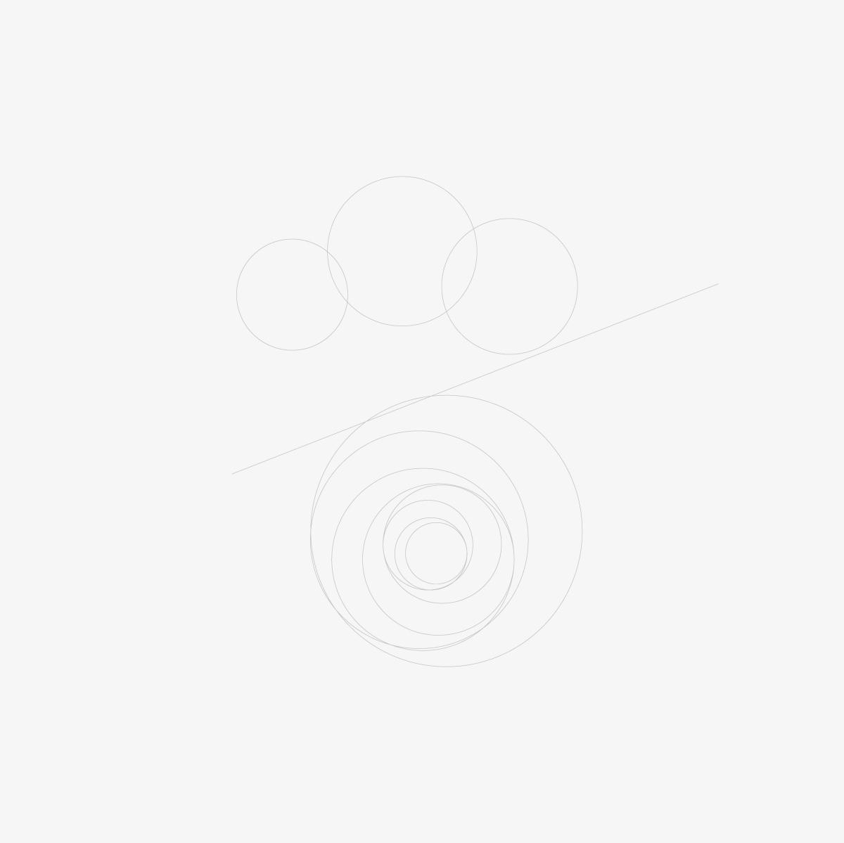 https://www.orlandinifrancesco.com/wp/wp-content/uploads/2019/02/Rest-Around-Logo-1.jpg