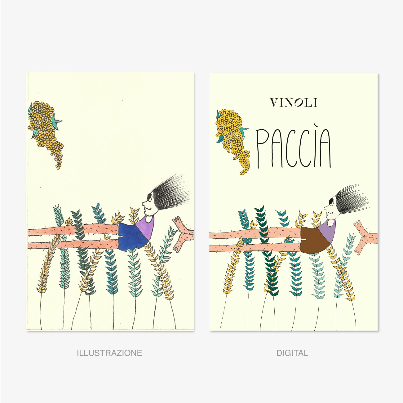 https://www.orlandinifrancesco.com/wp/wp-content/uploads/2019/07/Digital-Label-Paccia-Cantina-Vinoli.jpg